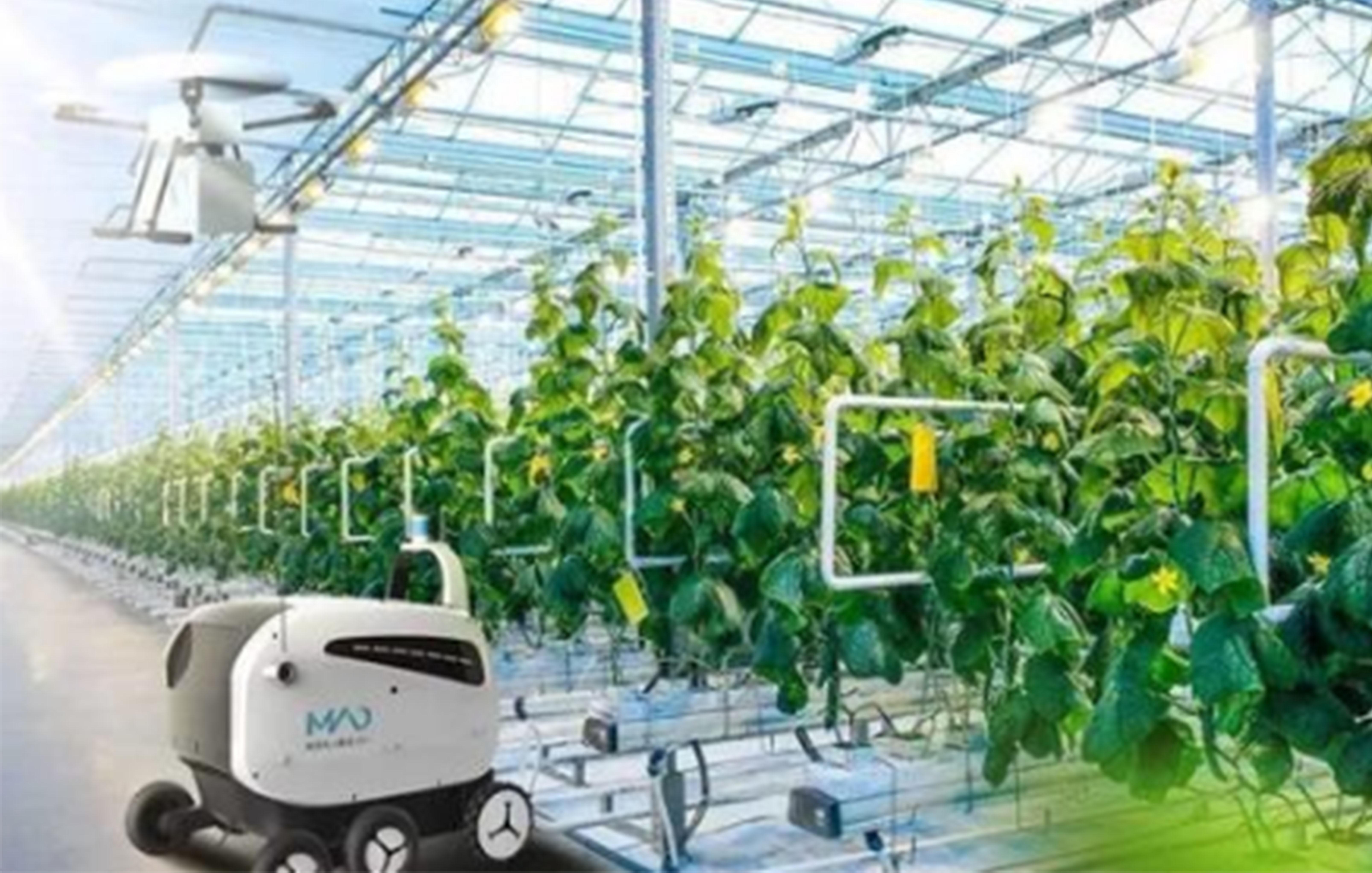 智慧农业赋能农业现代化高质量发展